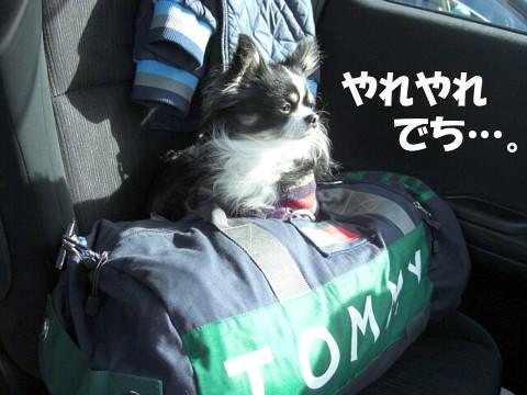 1127軽井沢⑧.jpg