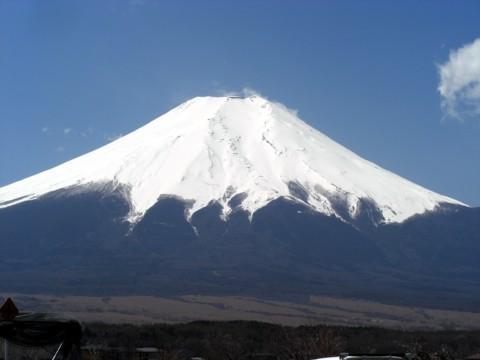 11いちご狩り富士山晴.jpg