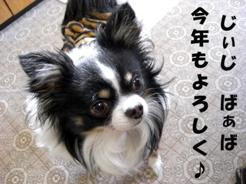 お正月パパ実家.jpg