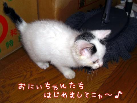 たっくん②-2.jpg