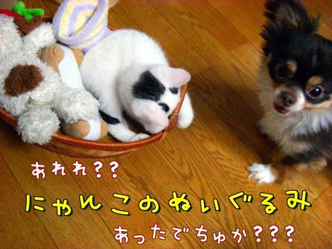 にゃんこのぬいぐるみ④-1.jpg