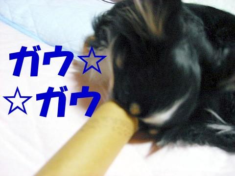 ミックン象さん③.jpg