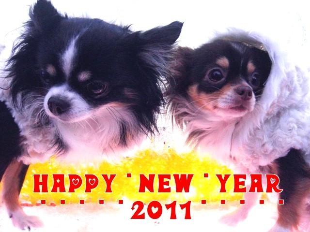 新年ごあいさつ♪.jpg