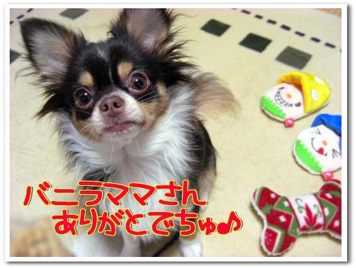 2010バニラママさん素敵なプレゼント⑤.jpg