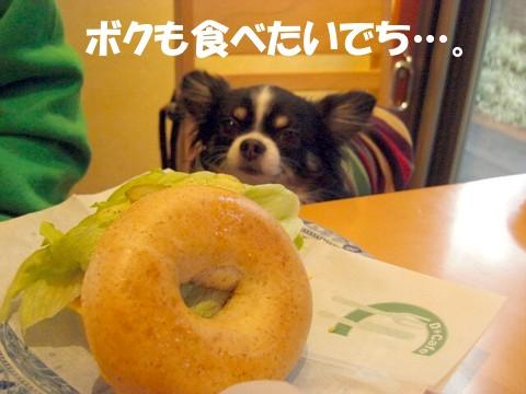 1127軽井沢⑭.jpg