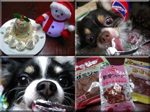 2010クリスマスケーキ☆ミックン☆トミー☆.jpg