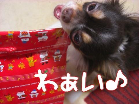 2010バニラママさん素敵なプレゼント①.jpg