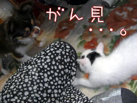 たっくん⑤-2.jpg