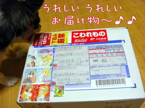 バニラママさんからのプレゼント①-1.jpg