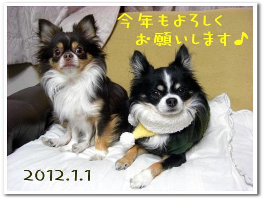 新年のご挨拶2012.jpg